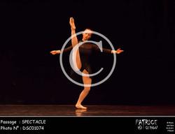 SPECTACLE-DSC01074
