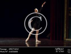 SPECTACLE-DSC01093