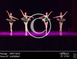 SPECTACLE-DSC00563