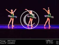 SPECTACLE-DSC00522