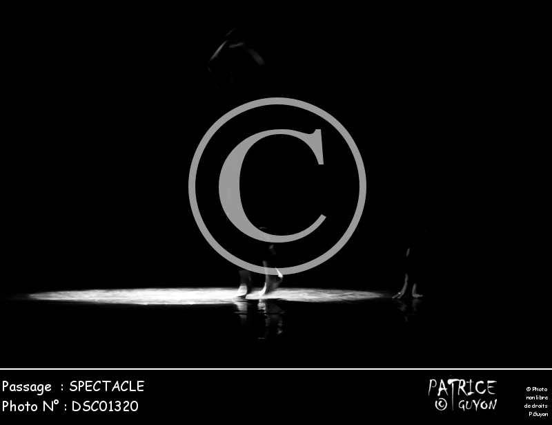 SPECTACLE-DSC01320