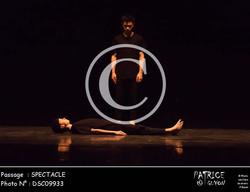 SPECTACLE-DSC09933
