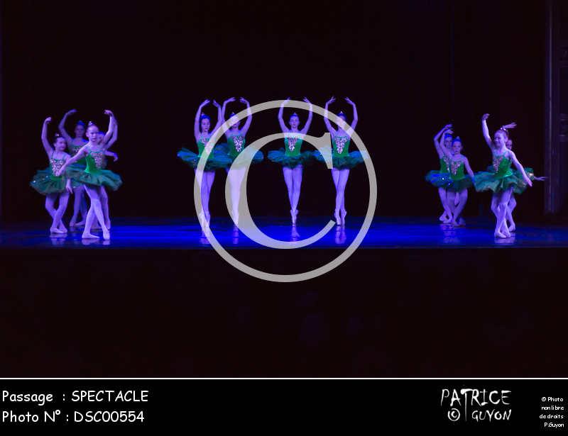 SPECTACLE-DSC00554