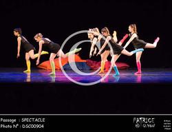 SPECTACLE-DSC00904