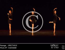 SPECTACLE-DSC01068