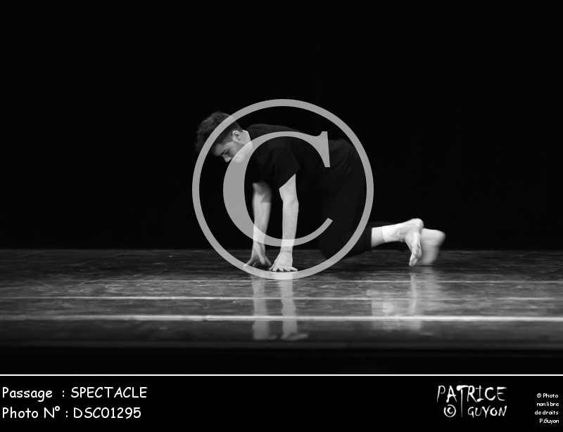 SPECTACLE-DSC01295