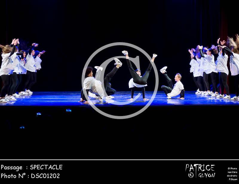 SPECTACLE-DSC01202