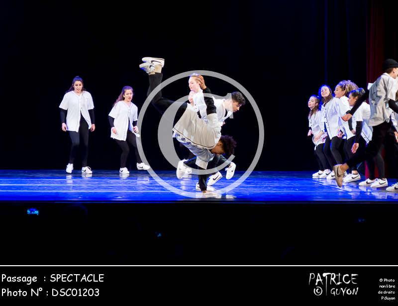 SPECTACLE-DSC01203