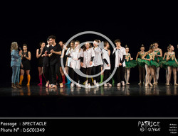 SPECTACLE-DSC01349