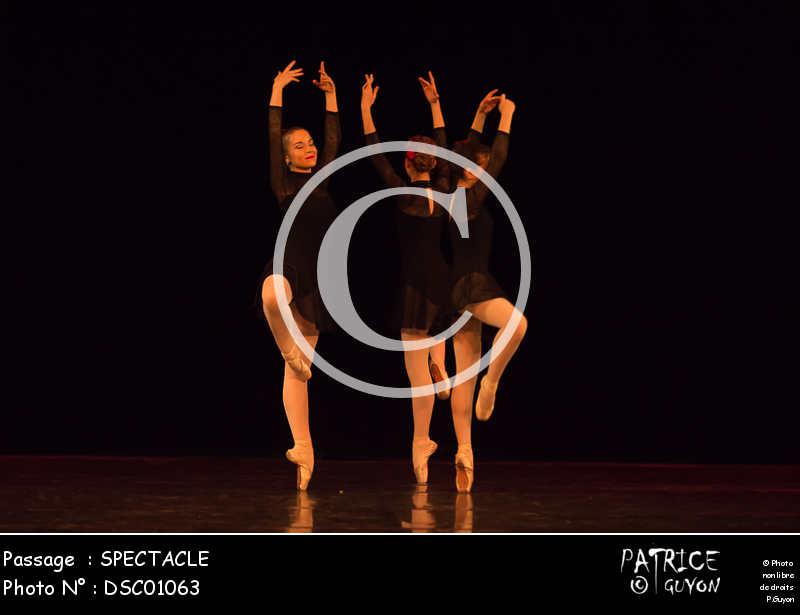 SPECTACLE-DSC01063