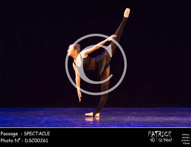 SPECTACLE-DSC00261