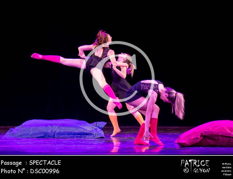 SPECTACLE-DSC00996