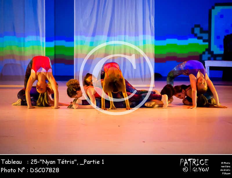 _Partie 1, 25--Nyan Tétris--DSC07828