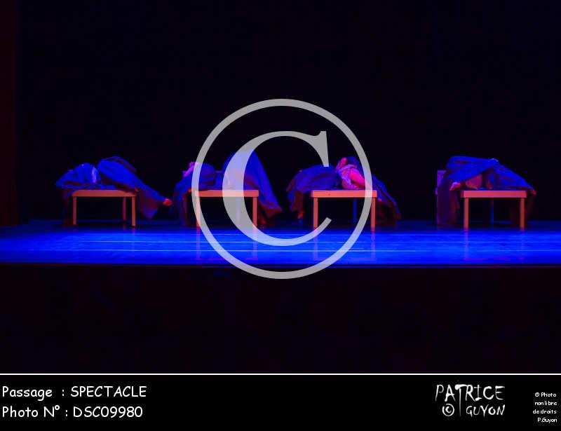 SPECTACLE-DSC09980