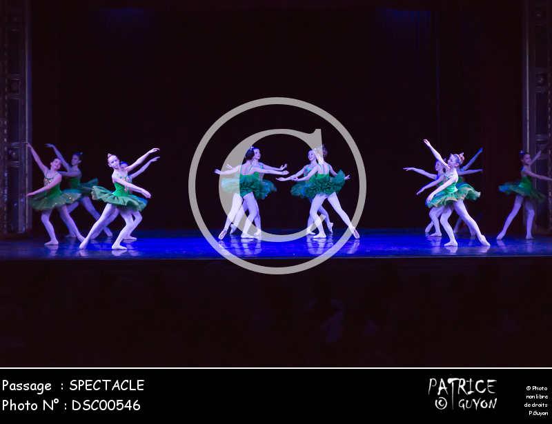 SPECTACLE-DSC00546