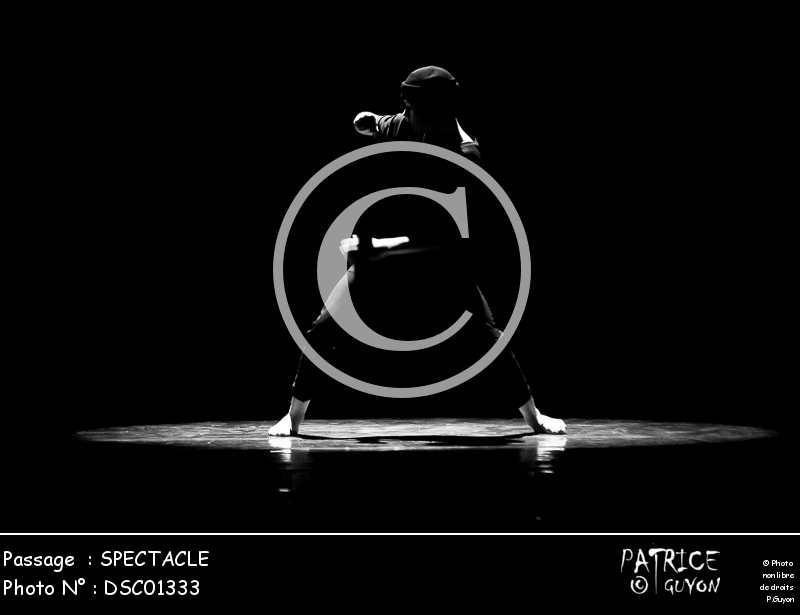 SPECTACLE-DSC01333