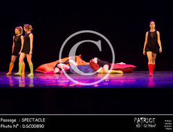 SPECTACLE-DSC00890