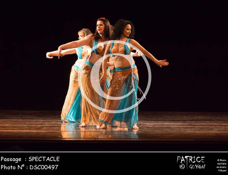 SPECTACLE-DSC00497