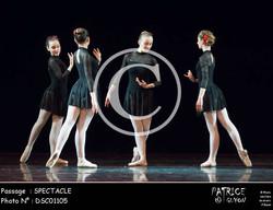 SPECTACLE-DSC01105