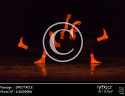 SPECTACLE-DSC09950
