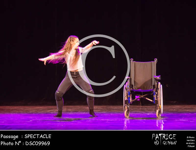 SPECTACLE-DSC09969