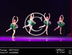 SPECTACLE-DSC00583