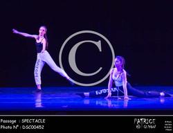 SPECTACLE-DSC00452