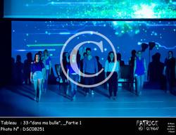 _Partie 1, 33--dans ma bulle--DSC08251