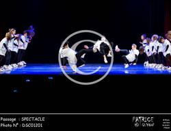 SPECTACLE-DSC01201