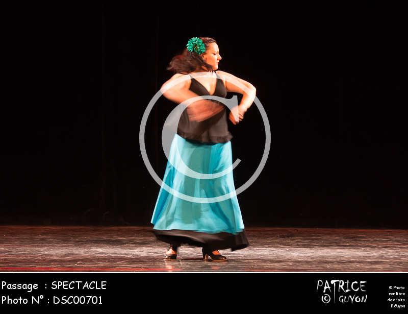 SPECTACLE-DSC00701