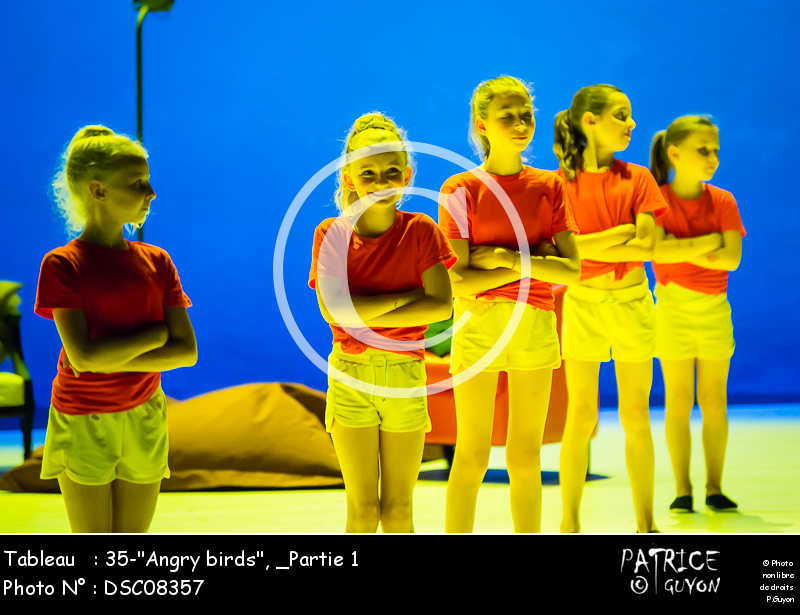 _Partie 1, 35--Angry birds--DSC08357