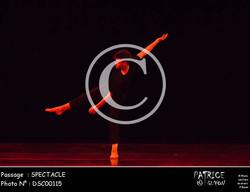SPECTACLE-DSC00115