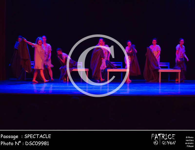 SPECTACLE-DSC09981