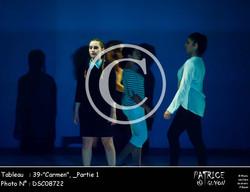 _Partie 1, 39--Carmen--DSC08722