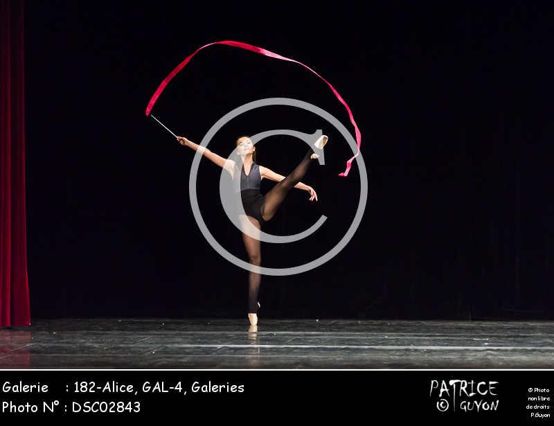 182-Alice, GAL-4-DSC02843