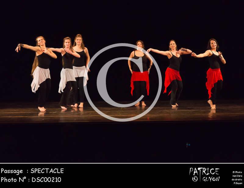 SPECTACLE-DSC00210