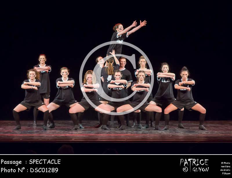 SPECTACLE-DSC01289