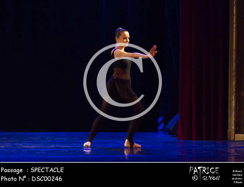 SPECTACLE-DSC00246