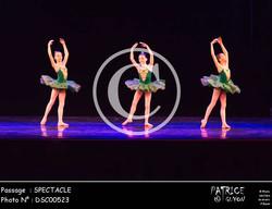 SPECTACLE-DSC00523
