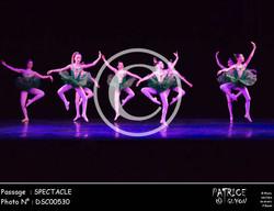 SPECTACLE-DSC00530