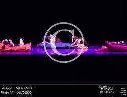 SPECTACLE-DSC01000