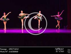 SPECTACLE-DSC00569