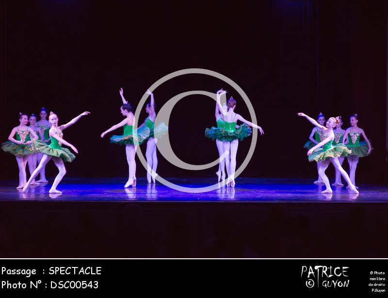 SPECTACLE-DSC00543
