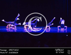 SPECTACLE-DSC00624