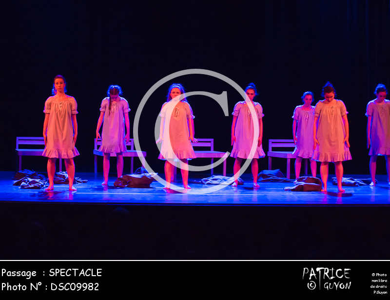 SPECTACLE-DSC09982