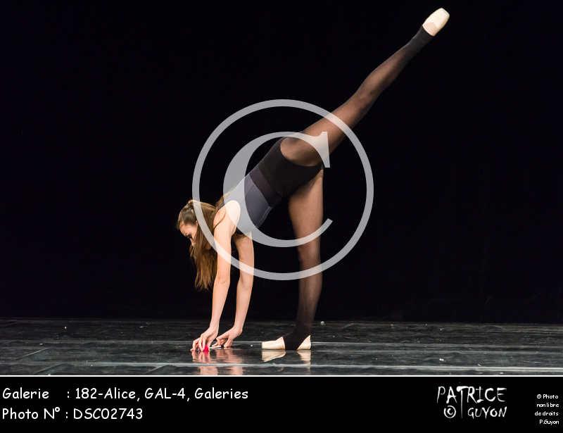 182-Alice, GAL-4-DSC02743
