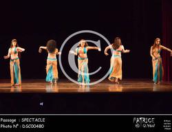 SPECTACLE-DSC00480