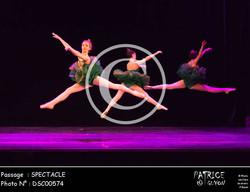 SPECTACLE-DSC00574