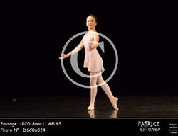 020-Anna LLAMAS-DSC06524
