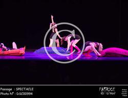 SPECTACLE-DSC00994